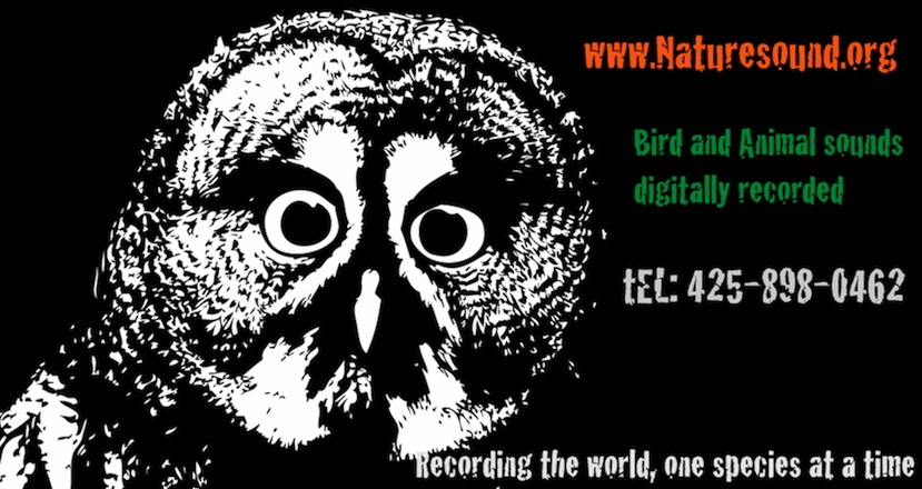 Naturesound.org Logo
