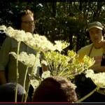 Au p'tit bonheur – Field Recording mit Boris Jollivet