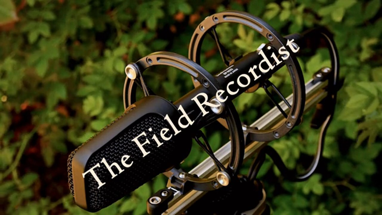 The Field Recordist Vimeo