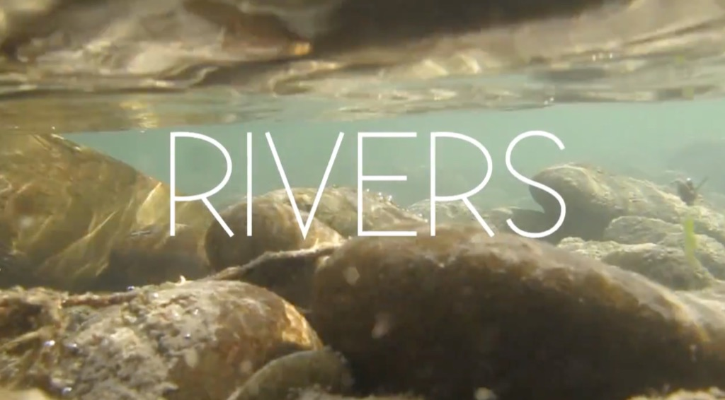 RIVERS AND STREAMS LIBRARY Making of