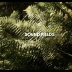 Sound Field: Adventures in contemporary field recording