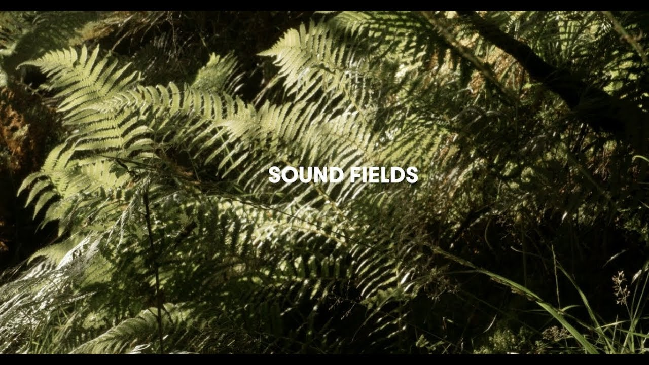 Sound Field - Adventures in contemporary field recording